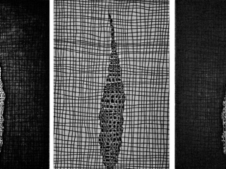 cypress-2-large